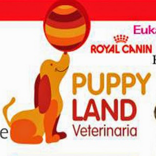 Puppy Land images, pictures