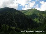 Çamlıhemşin ilçesi, Ayder yaylası ve buzullar (Çamlıhemşin county, Ayder upland and glacier)