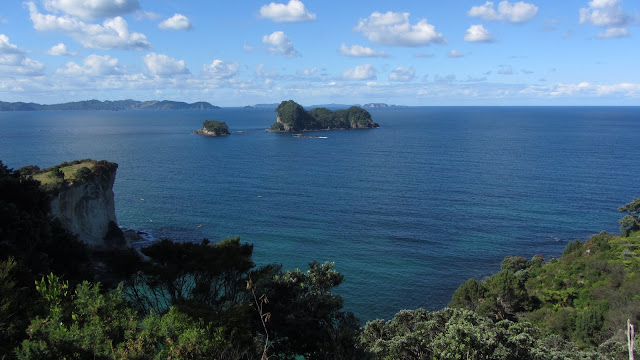 Looking out across the Cathedral Cove Marine Reserve.