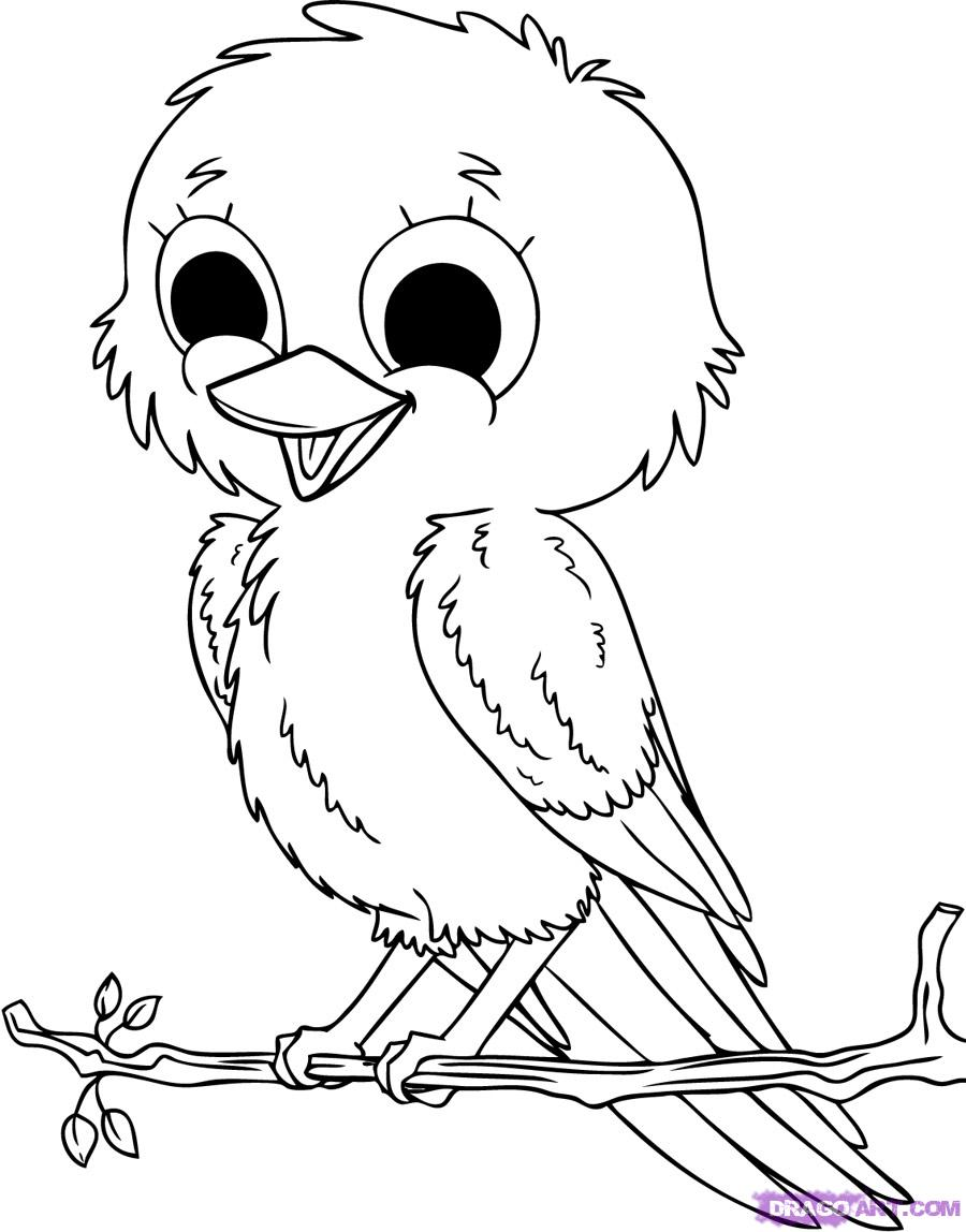 rainforest animal coloring pages -  Rainforest on Pinterest Dioramas, River