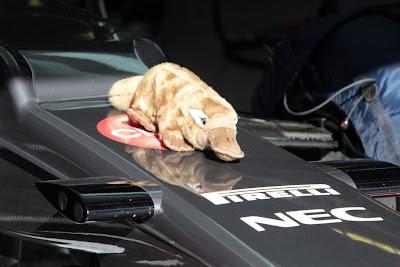 утконос на болиде Sauber от болельщиков на предсезонных тестах 2012 в Барселоне