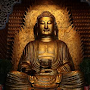 Buddhist Blogs Free