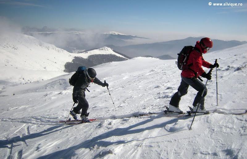 schi in Grohotis