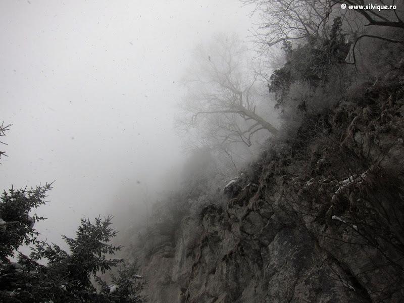 Canionul Cioranga si Pestera de Gheata