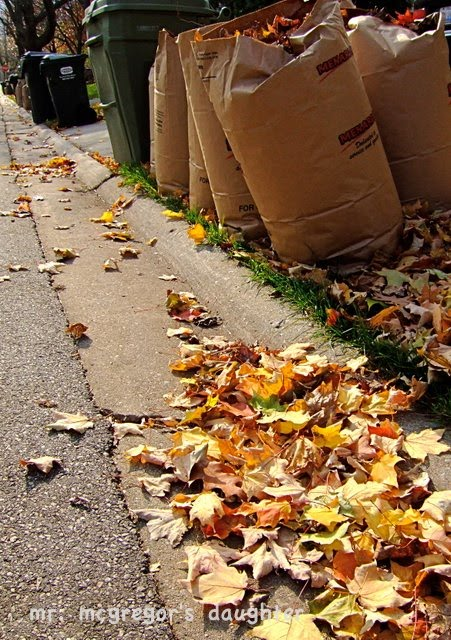 The Joy of Leaf Mold