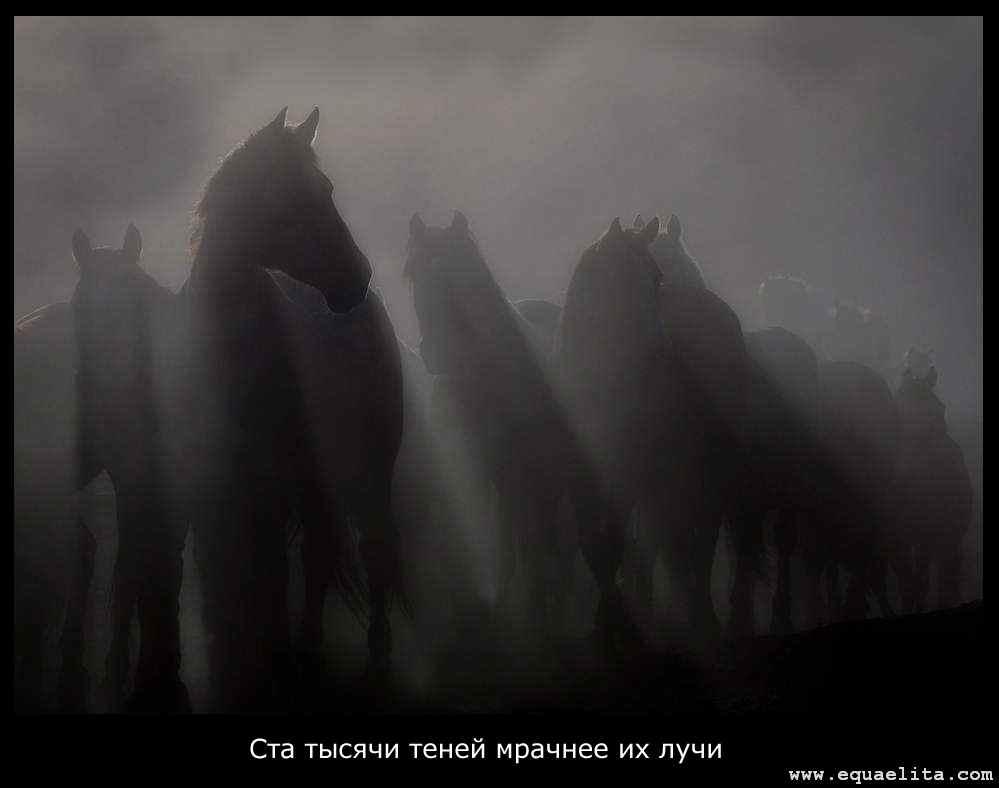 Призрачные Кобылы
