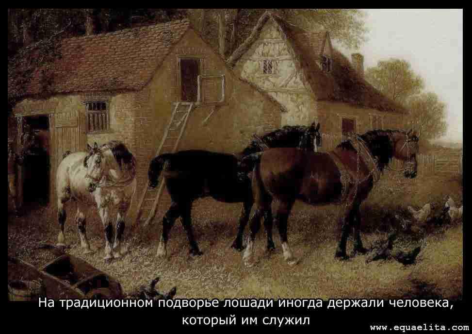 Открытка с лошадьми
