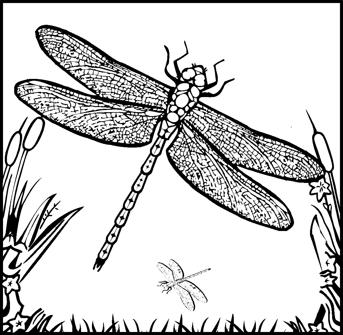 coloring pages of fairies - Fun Coloring Pages Rainbow Magic