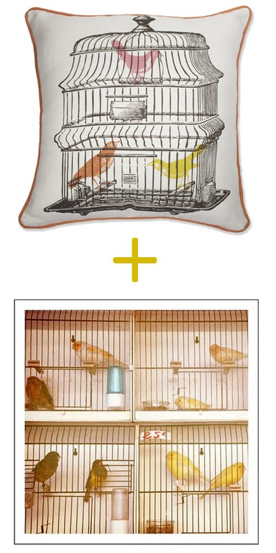 THE BIRDCAGE | Fashion Cult