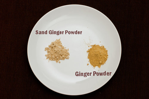 Sand Ginger Powder and Ginger Powder