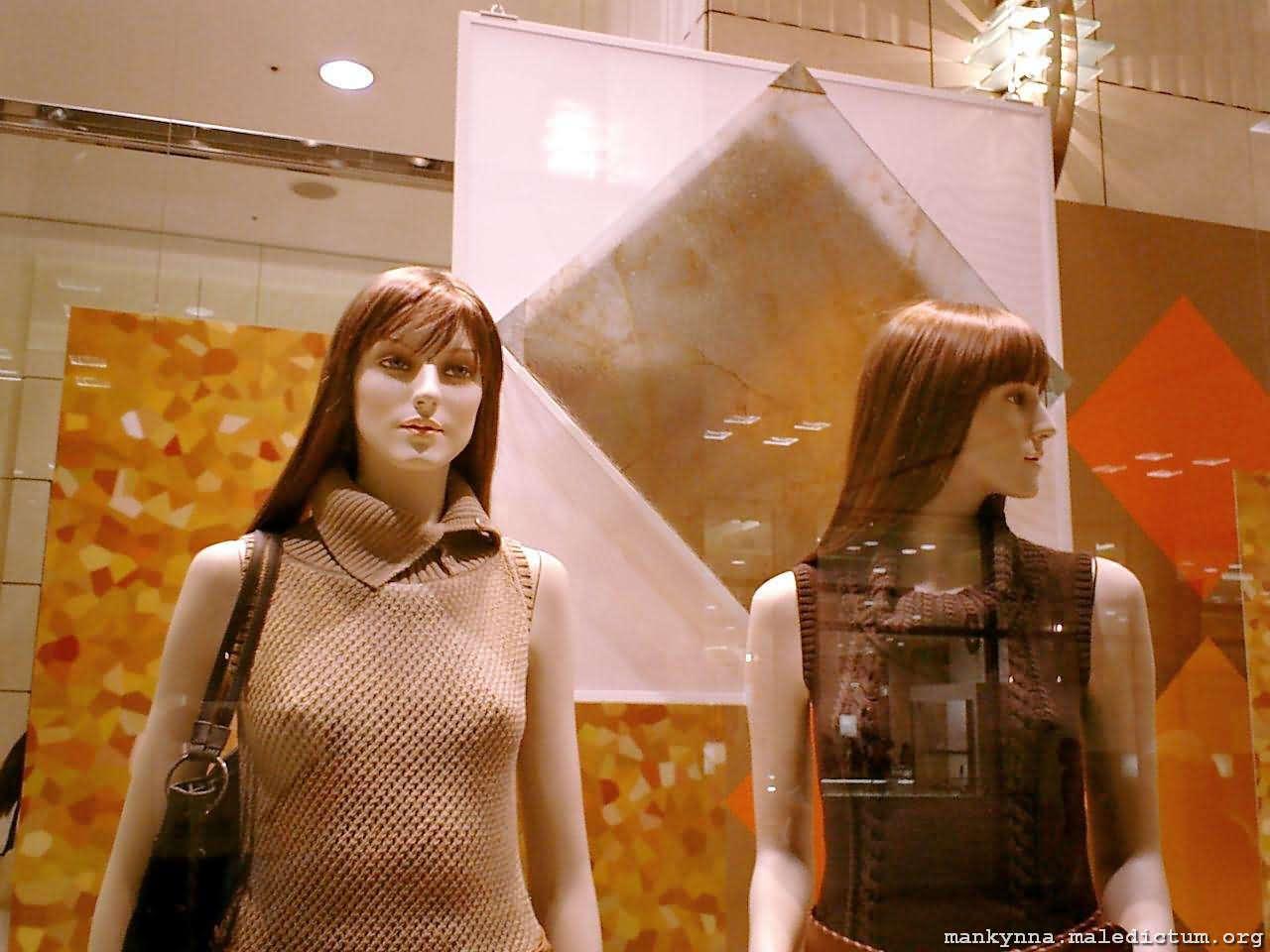 Два манекена за стеклом