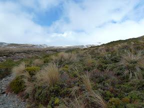 Parc du Tongariro