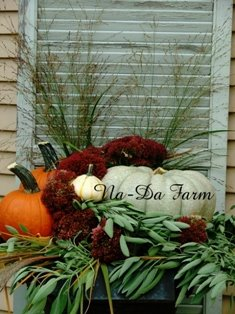 autumn shutter idea...