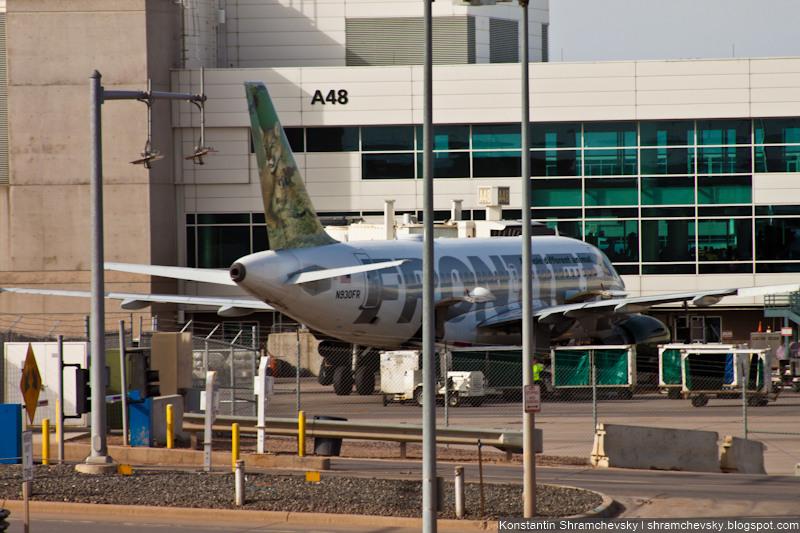 USA Colorado Denver International Airport Frontier Airlines Airbus A319 N930FR Lioness Lola and Cub Max США Колорадо Денвер Международный Аэропорт Фронтир Эйрлайнз Эйрбас Аэробус А319 львица Лола львёнок Макс