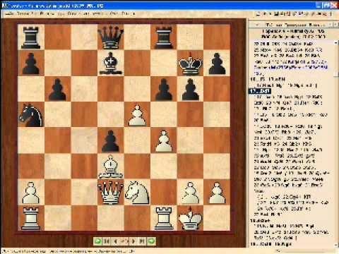 в которой болгарский шахматист веселин топалов и американец гата камский разошлись