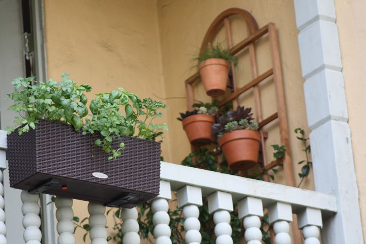 Gardening life on the balcony dress your home - Balcony garden designs india ...