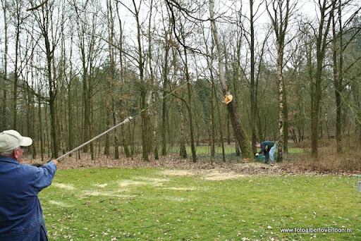houthakkersmeewerkdag overloon 3-03-2012 (41).JPG