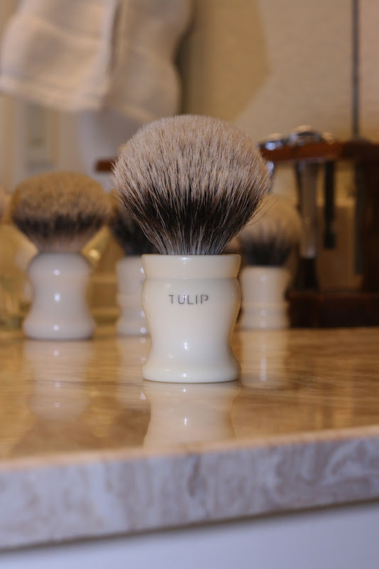 [Image: Tulip2.jpg]