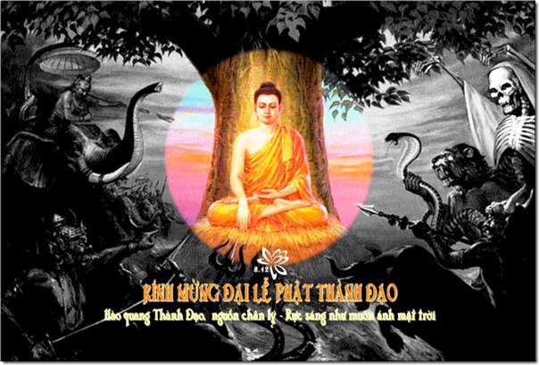 Cảm niệm ngày Phật thành đạo