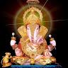 Shalini Thakur