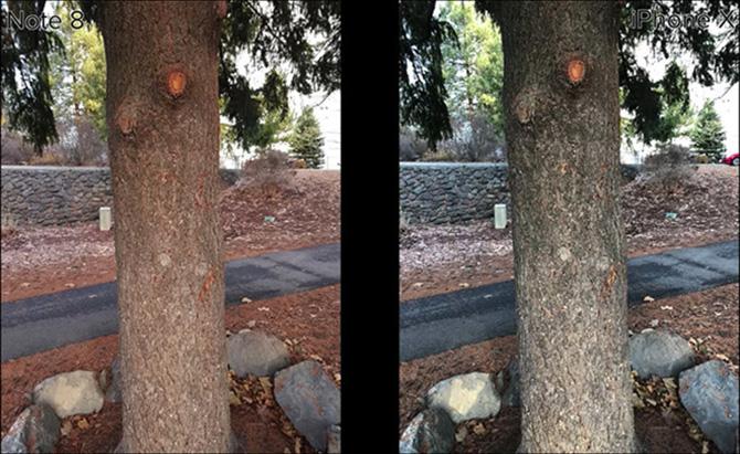 So sánh ảnh chụp từ iPhone X và Samsung Galaxy Note 8