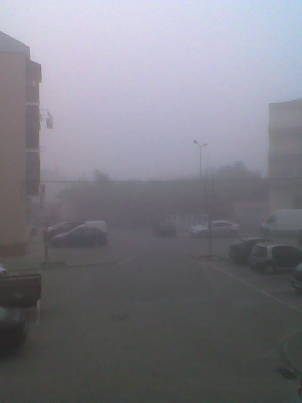 ..another fog day..0..