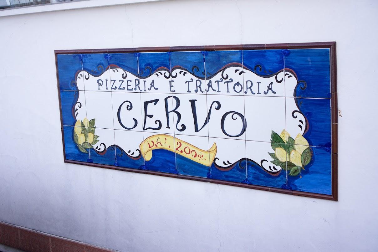 CERVO(チェルボ)
