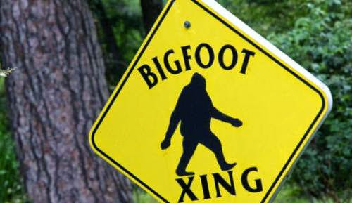 Researchers Claim Proof Of Russian Bigfoot