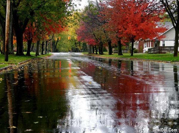 thơ mưa mùa Thu hay