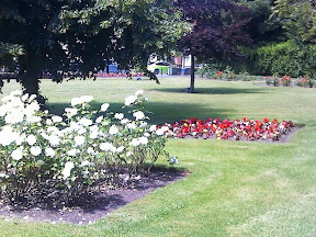 Flower Display in south st memorial area