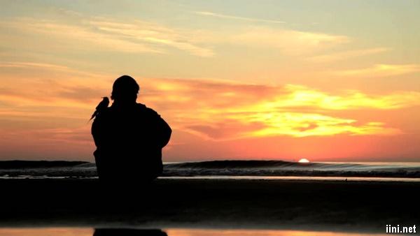 ảnh chàng trai ngồi trước biển lúc hoàng hôn