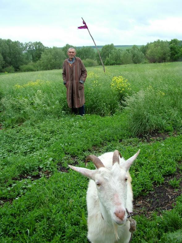 Лопухи и все что вокруг - Геннадий Михеев