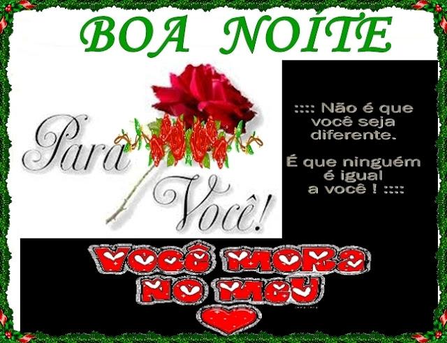 BOA NOITE - 15