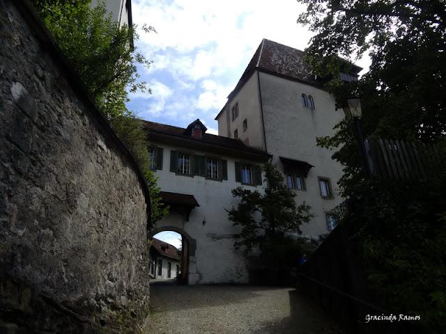 passeando - Passeando pela Suíça - 2012 - Página 14 DSC05123