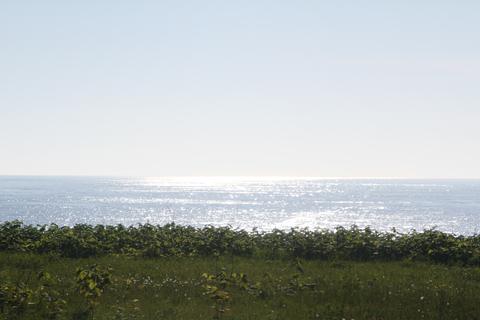 沿岸バス 豊富留萌線からの車窓 その4
