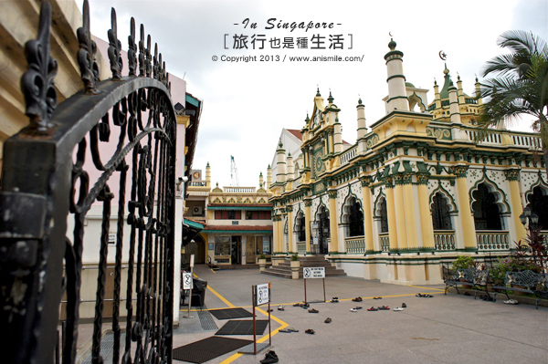 【走走新加坡】神祕又繽紛的小印度區
