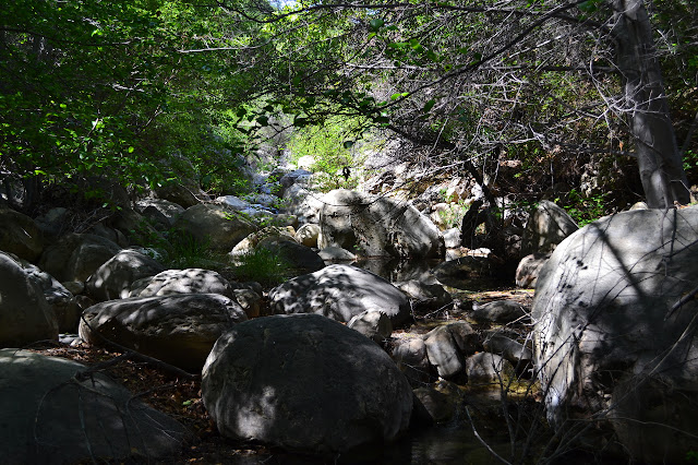 Murietta Creek