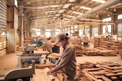 Đơn hàng chế biến và gia công gỗ cần 15 nam thực tập sinh làm việc tại Fukushima Nhật Bản tháng 12/2016