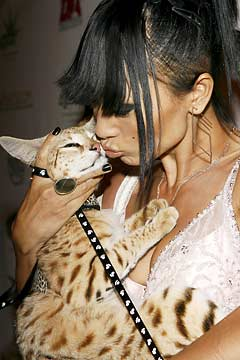 Bai Ling and her cat