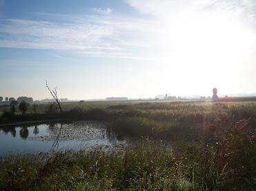Amsterdam-Tilburg (NL): 125km (ou 80 ou 40): 01-02/09/2012 100_8857