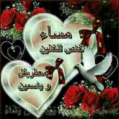 Aiman Said Photo 13