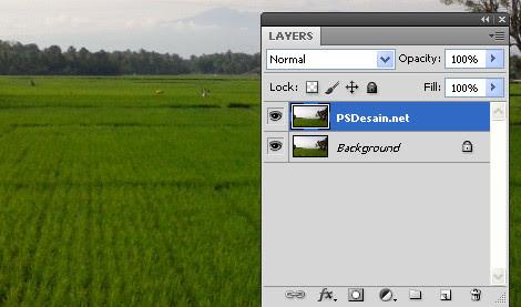 Mengedit Jepretan Foto Dengan Photoshop