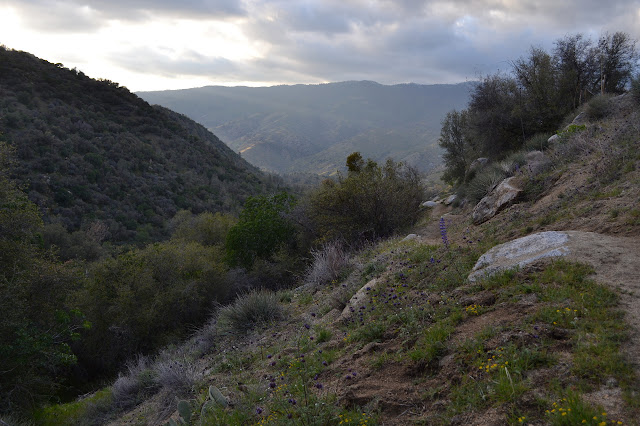 sun rays coming down the Kern River canyon
