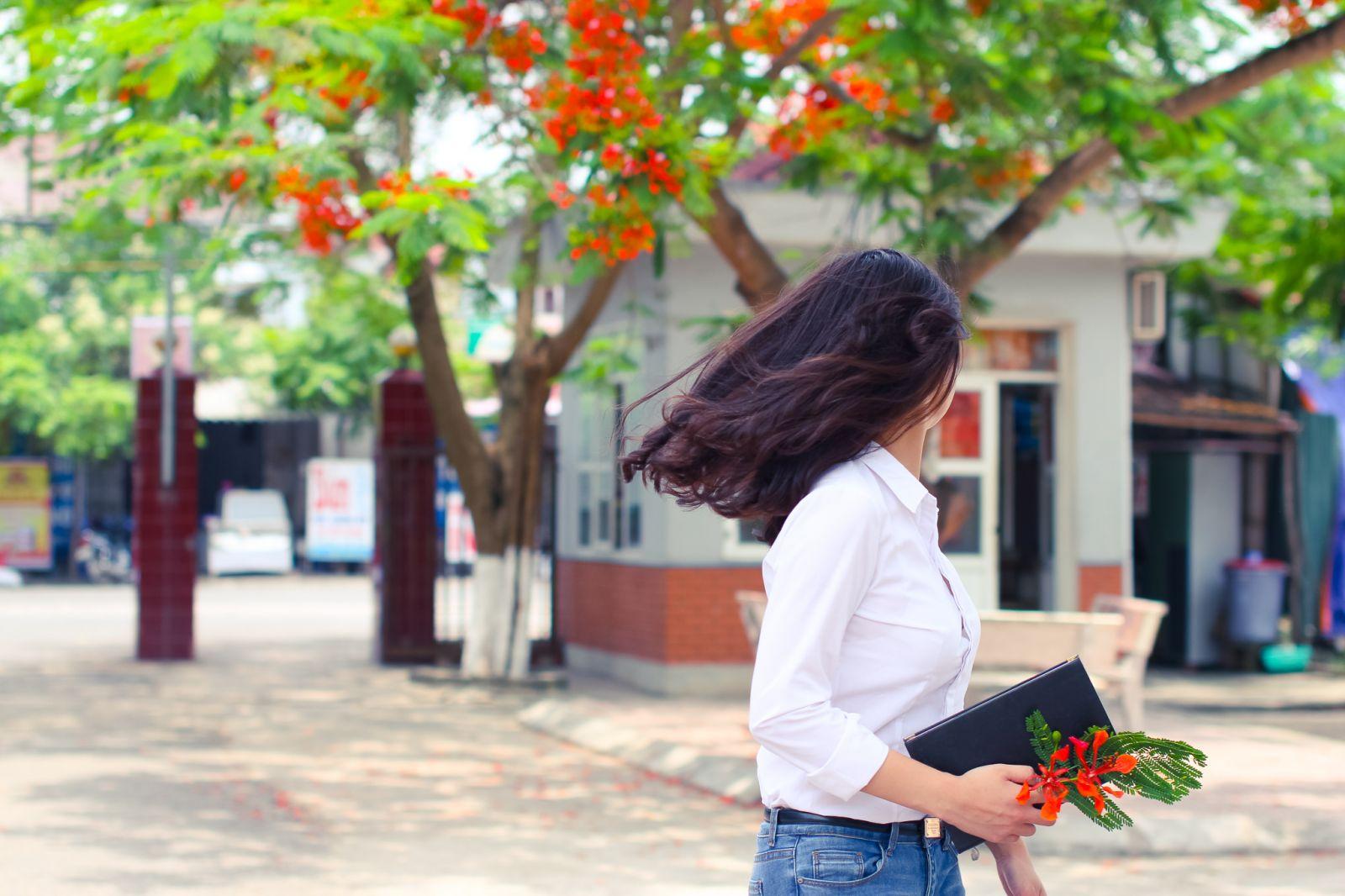 ảnh cô gái và hoa phương