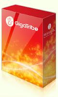 تحميل تنزيل برنامج تبادل و مشاركة الملفات P2P GigaTribe 3 برابط مباشر
