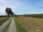 Blick auf Schatthausen - aufgenommen beim Nordic Walking