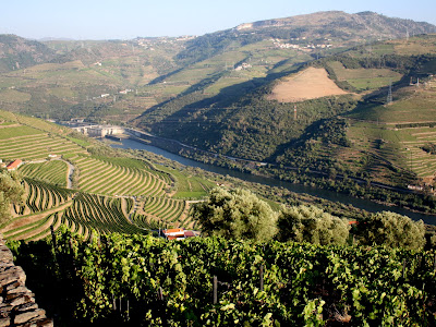 Douro Valley in Portugal