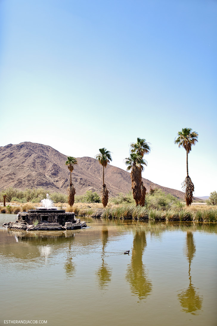 Local Adventures to Zzyzx CA.