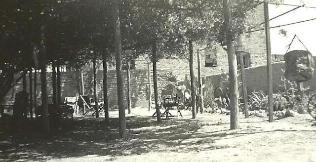 Hình ảnh cây hồng Tombstone's Rose Tree vào năm 1935