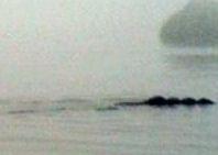 La versión inglesa del monstruo del Lago Ness ya tiene foto